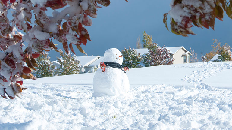 The snowman is the beloved symbol for the winter. He is one of the most popular figures worldwide. Wherever people know snow they know also snow formed figures and figurines. The snowman is apolitical and has no religious background. Two of many reasons to enjoy high sympathies...
