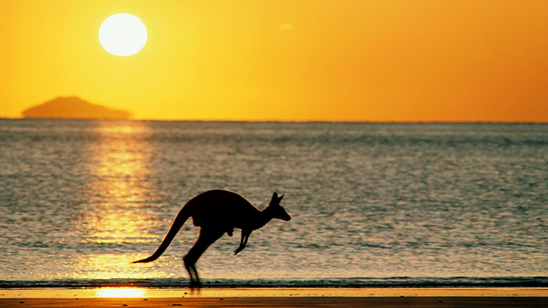 Australia Day (previously known as Anniversary Day, Foundation Day, and ANA Day) is the official national day of Australia. Celebrated annually on 26 January, the date commemorates the arrival of the First Fleet at Sydney Cove in 1788 and the proclamation at that time of British sovereignty over...
