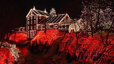 Christmas Tree Lights Day