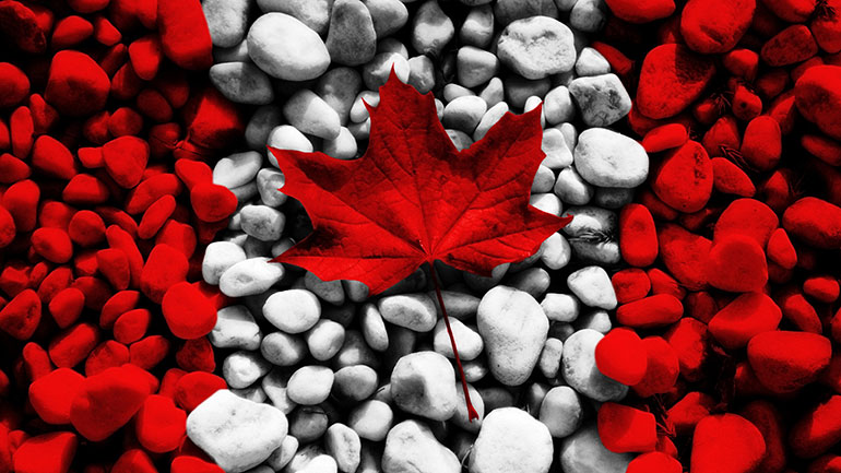 Flag Day, officially named National Flag of Canada Day (French: Jour du drapeau national du Canada), is observed annually on February 15, commemorating the inauguration of the Flag of Canada on that date in 1965.   It's a day to honor the national flag which is also known as Maple Leaf or...