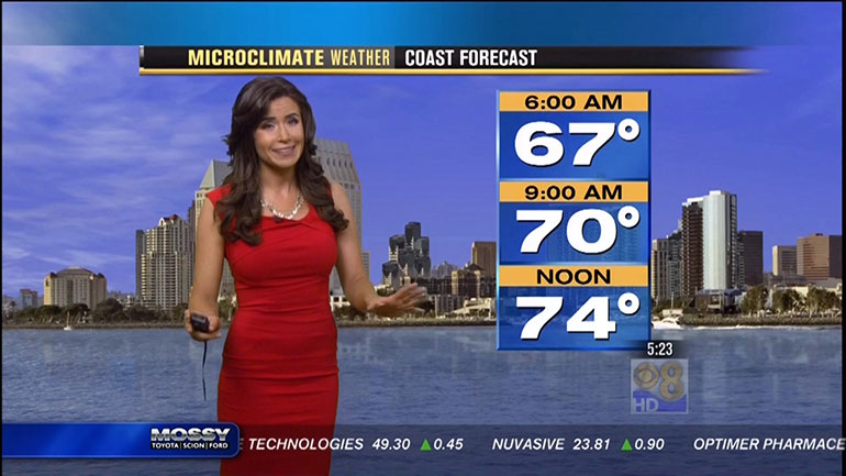Weatherman's Day honors weathermen, and woman who work hard to accurately predict the often fickle weather. Despite major technological advances and supercomputers, forecasting the weather is still a tricky, and ever changing business.  Knowing the weather is important in so many ways. It...