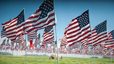 Flag Day (United States)