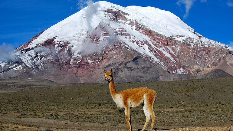 Chimborazo Day celebrates the mountain which represents the highest point on Earth. Technically, Chimborazo is higher than Mt. Everest, as it resides closer to the equator where the Earth 'bulges', making it relatively taller even though it's smaller overall!  Chimborazo, an inactive...