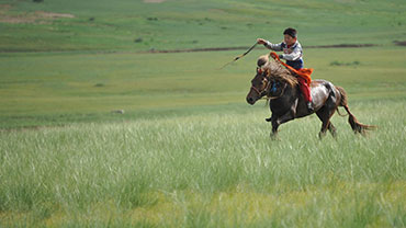 Naadam Day in Mongolia