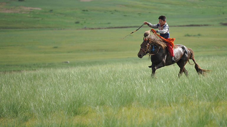 Naadam (meaning:'games') is a traditional festival in Mongolia. The festival is also locally termed 'eriin gurvan naadam', 'the three games of men'. The games are Mongolian wrestling, horse racing and archery and are held throughout the country during midsummer. Women have started participating in...